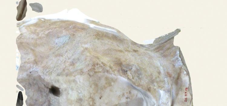 Clement Valla ::: 'Surface Survey'